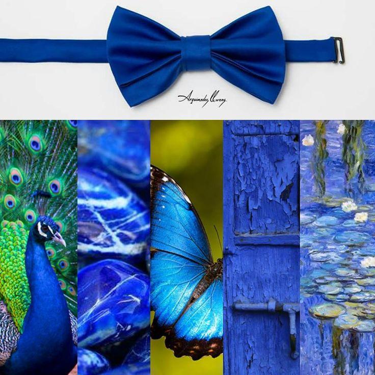 Pajarita Classic por ARQUIMEDES LLORENS Color: AZUL REY #pajarita #bowtie #bowties #pajaritas #corbatin #gala #etiqueta #smoking #elegante #inspiración