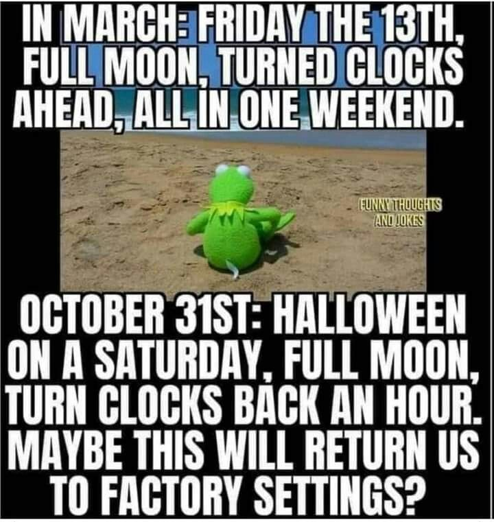 Hope For The Rest Of 2020 Funny Halloween Memes Funny Thoughts Just For Laughs