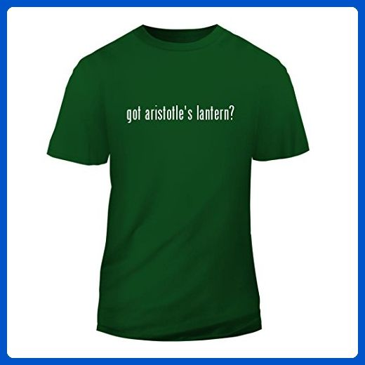 got aristotle's lantern? - New Short Sleeve Adult Men's T-Shirt, Green, Large - Superheroes shirts (*Amazon Partner-Link)