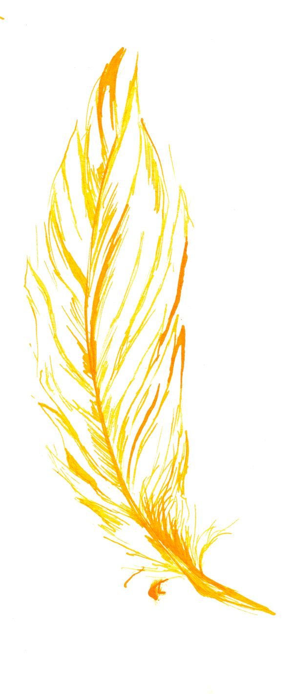 <b>Yellow</b> <b>Feather</b> by Thalo-Ryder on DeviantArt