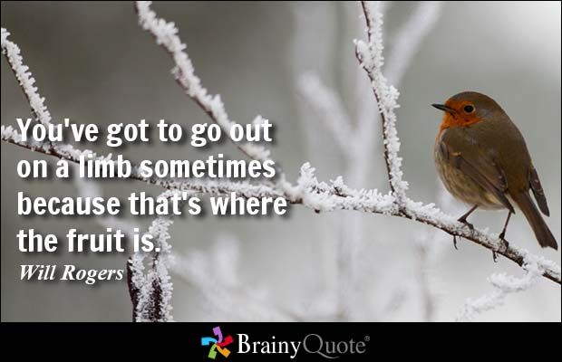 You've got to go out on a limb sometimes because that's where the fruit is. - Will Rogers