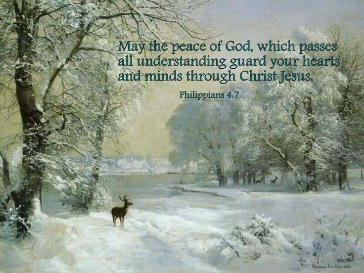61 Best God S Peace Images On Pinterest Bible Quotes