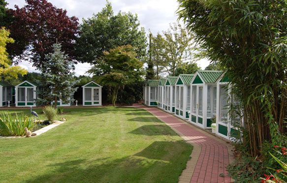 Some of the cabins at our Norfolk cattery