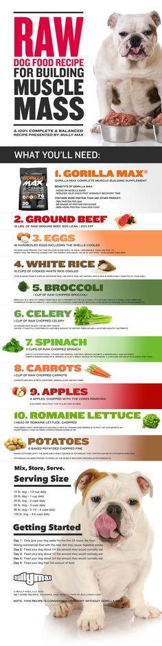Raw Food Diet Recipes For Pitbulls