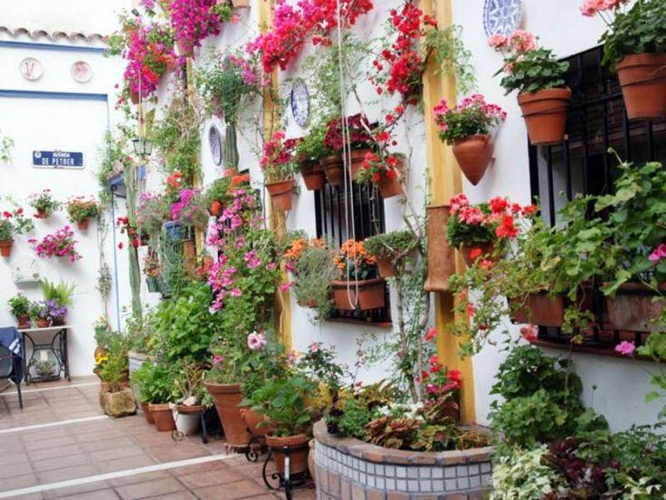 257 best patios de cordoba images on pinterest windows - Patios de granada ...