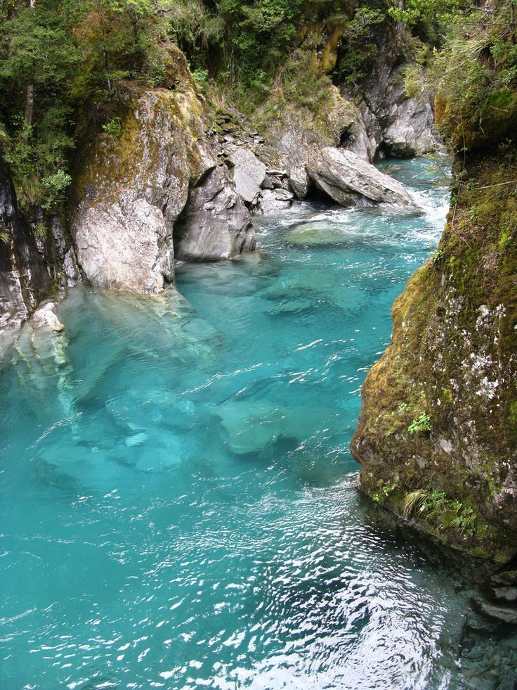 Love To Share Goblin 39 S Gate Olympic National Park Awesome Views Pinterest Olympics