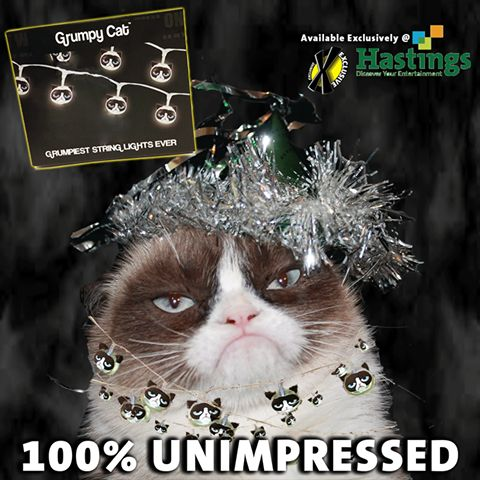 1199 best images about Grumpy Cat & Happy Bunny on Pinterest