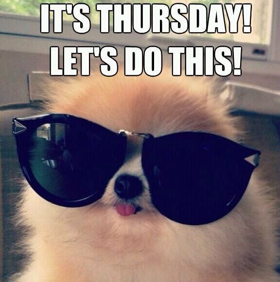 Funny Friday Dog Meme : It s thursday let do this day quotes almost