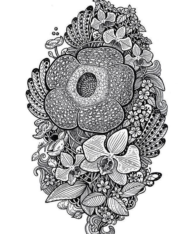 I love Indonesia. Dirgahayu Indonesia.  This is my old illustration about National Flower of Indonesia.  Melati Putih (Jasminum Sambac) as 'puspa bangsa' (national flower)  Anggrek Bulan (Phalaenopsis Amabilis) as 'puspa pesona' (flower of charm)  Padma Raksasa Rafflesia (Rafflesia Arnoldii) as 'puspa langka' (rare flower)