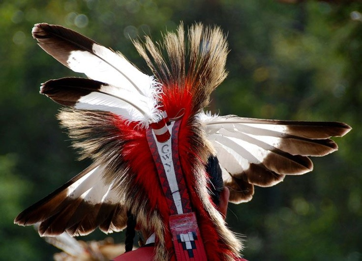 March 23, 2012: Eagle Headdress from Long Hunter State Park Pow Wow, photo by sdiver35