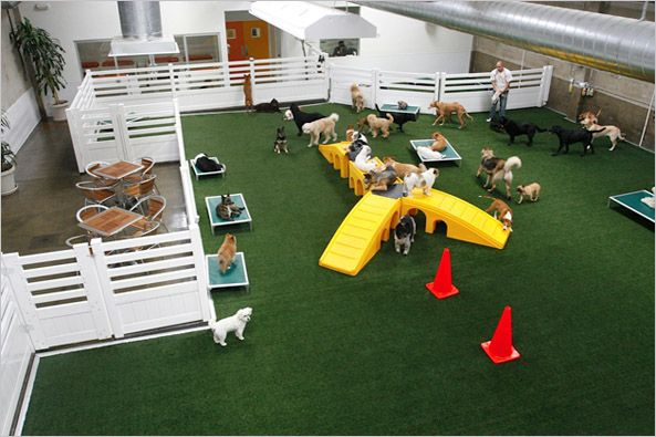 LA Dog Works. California dog daycare. K9 Grass, Modular fencing, play equipment, space flanked by seating.