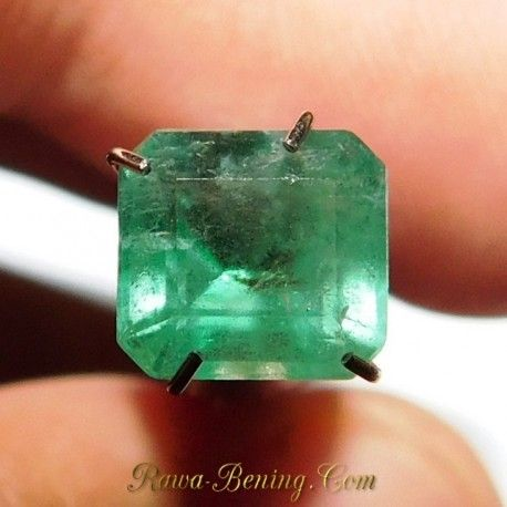 Square Cut Emerald 1.47 Carat, non dyed.