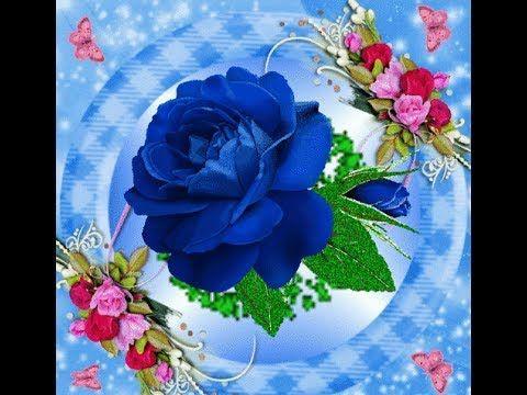 Good Night Romantic Special WhatsApp Video, Pics , Wallpaper - YouTube