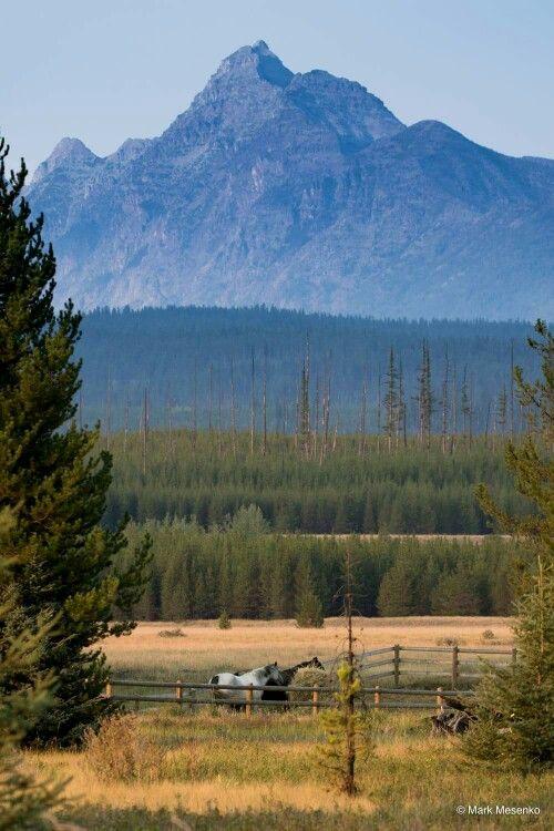 Beautiful day in Montana.