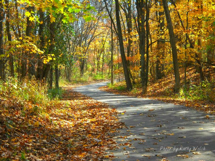 Winding Path by Kathy Welch