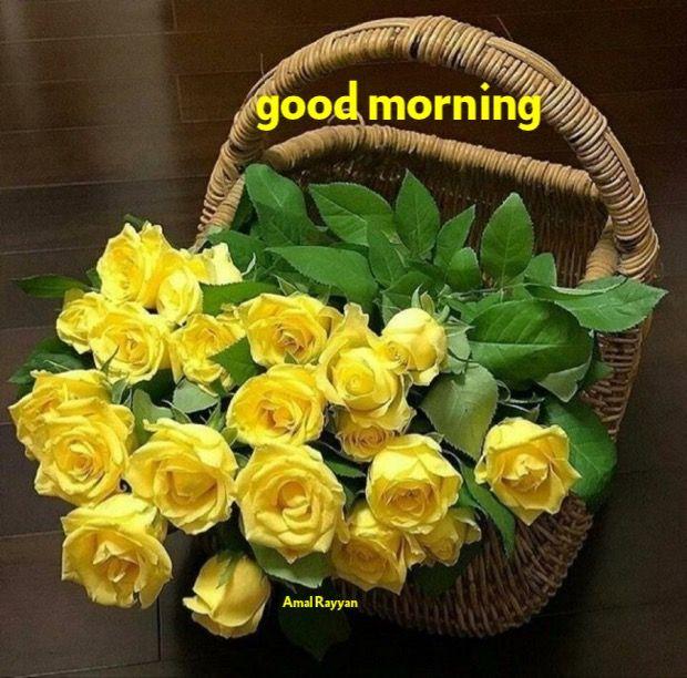 Good Morning Good Morning Flowers Yellow Roses Beautiful Flower Arrangements