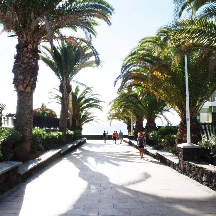 Las Palmas, Gran Canaria  @karindimitrovova