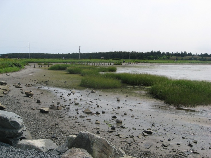Nova Scotia: Eastern Passage  (by J. Dyer)