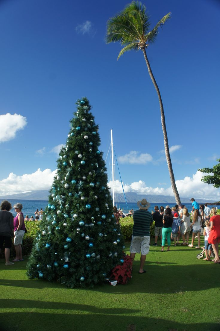 18 best christmas on maui images on pinterest canoeing kayaks and christmas tree in kaanapali maui fandeluxe Choice Image