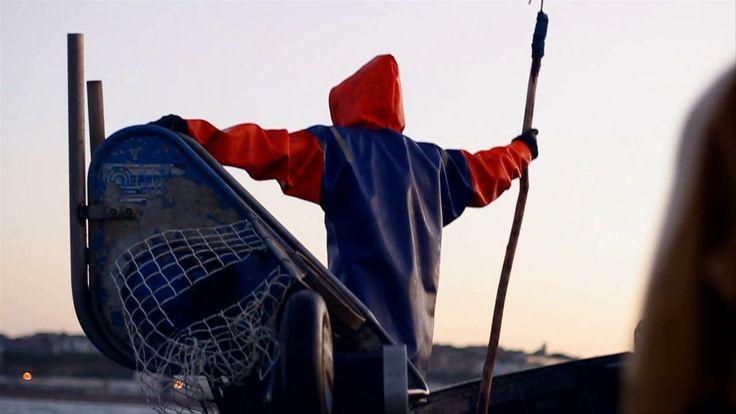OWOCE MORZA na FUTU.PL Plastikowe śmieci wyławiane przez rybaków można przetapiać na stołki – po odpowiednim przygotowaniu, nawet bez schodzenia z podkładu kutra. http://www.futu.pl/futu,2,2319,owoce_morza.html