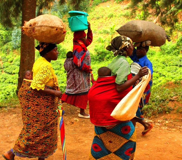 44 Best My Rwanda Images On Pinterest