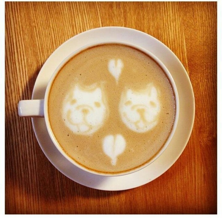 Bouledogue café crème