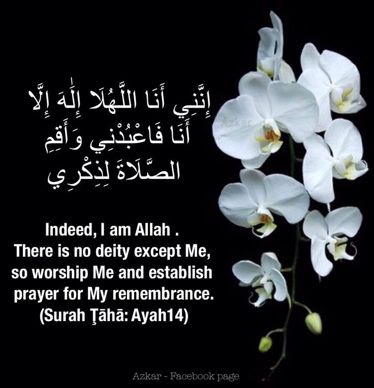 Indeed, I am Allah . There is no deity except Me, so worship Me and establish prayer for My remembrance. (Quran - 20:14)