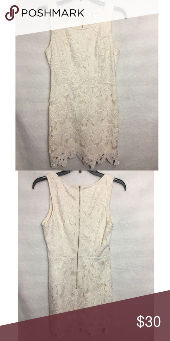 Cream Dress with Floral Lace Overlay Cream Dress with floral lace overlay. Great condition, never been worn. Runs a size small. Red Dress Boutique Dresses Mini