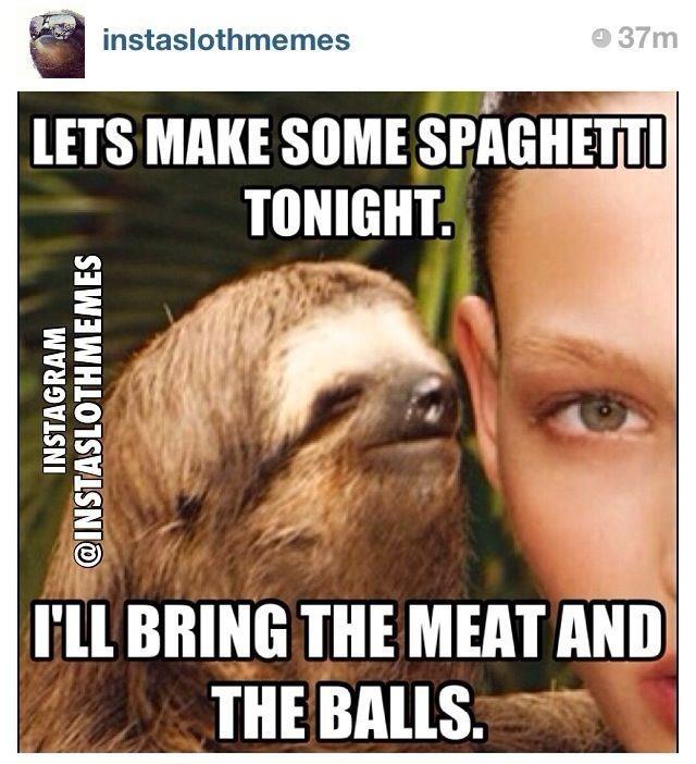Sloth humor
