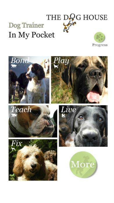 Our five pillars of Dog Training Bond, Play, Teach, Live