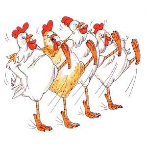 Chorus Line of 4 leg kicking chickens
