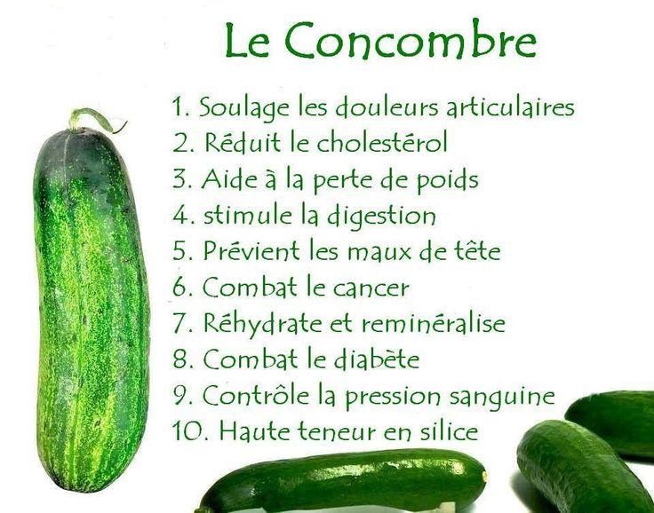Le concombre