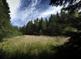 Národní přírodní rezervace Dářko - Vysočina | Turistický portál vítejte na Vysočině