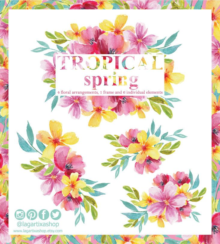 Flores en Acuarela Tropicales Clipart PNG pintadas a mano