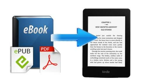 how to change dictionary in kindle paperwhite