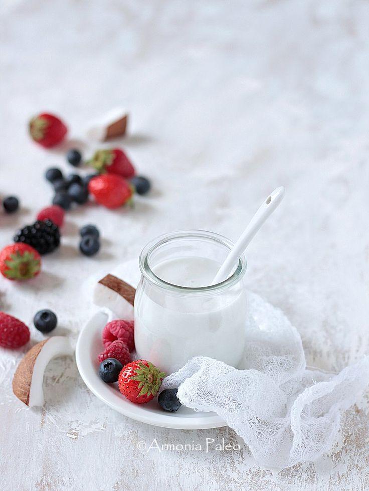 Yogurt Probiotico con Latte di Cocco AIP