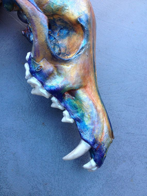 Painted Coyote Skull by TheBoneCat on Etsy