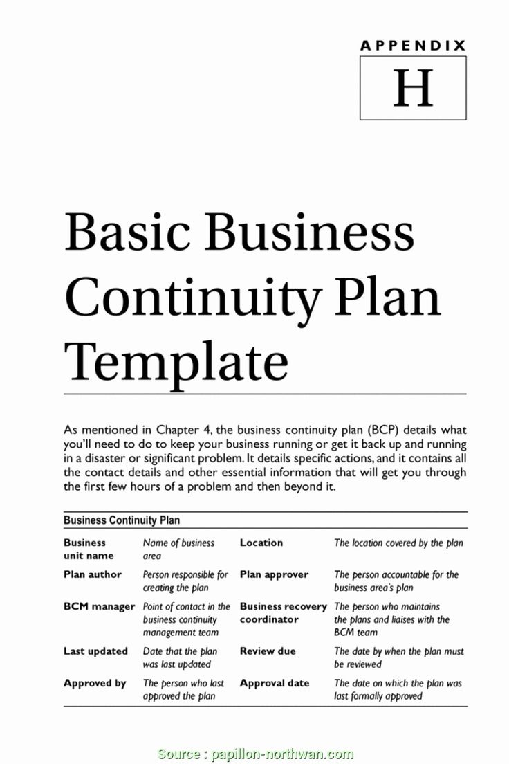 Small Business Continuity Plan Template Best Of Stupendous