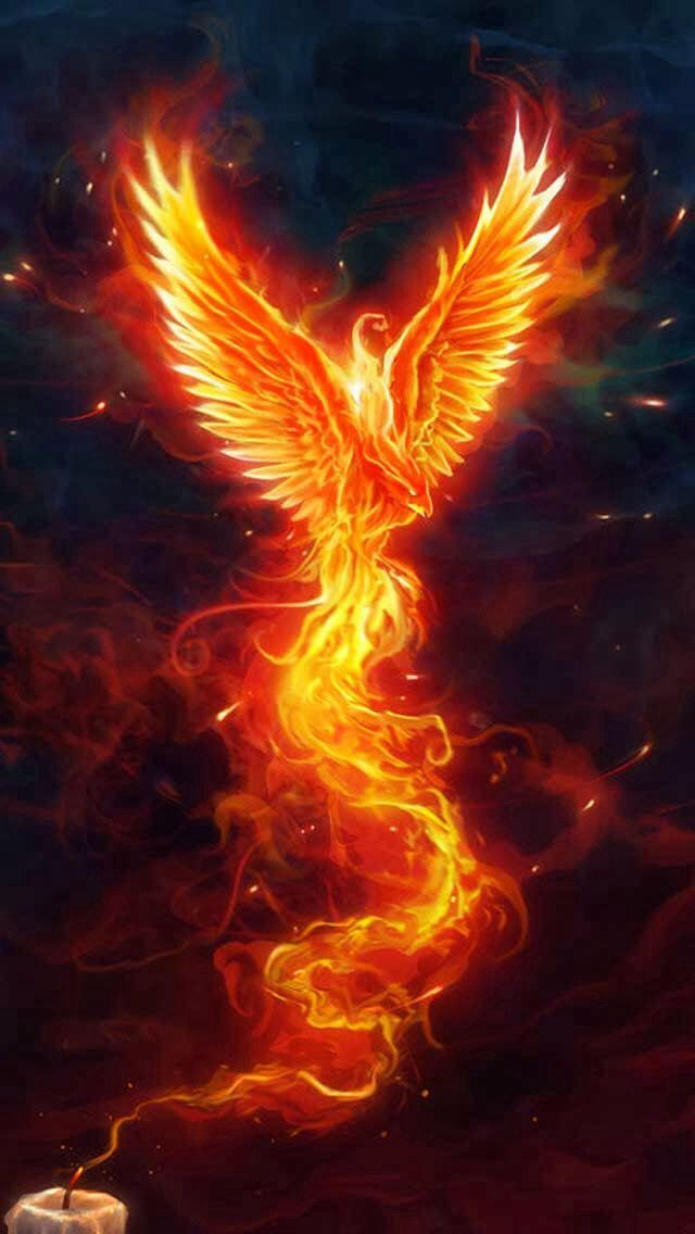 Mythical Phoenix Quotes. QuotesGram by @quotesgram