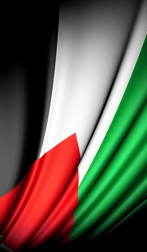 علم فلسطين | beautiful flag of Palestine