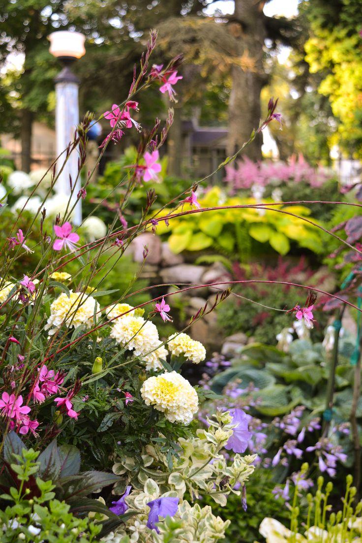 57 best beyond rain gardens green walls roofs rain barrels