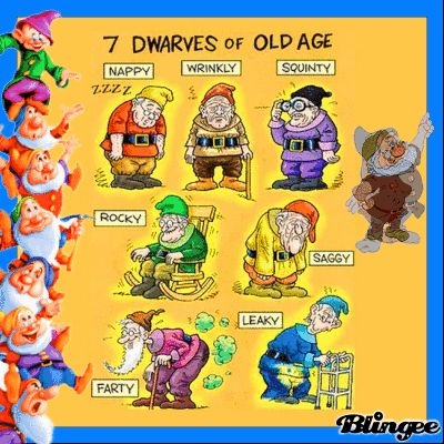 The 7 Dwarfs Of Old Age