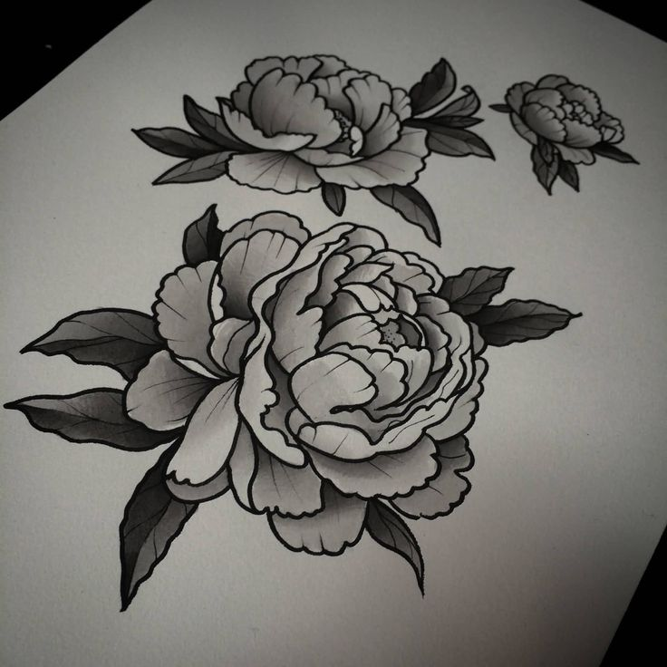 Peony Flower Tattoo Designs