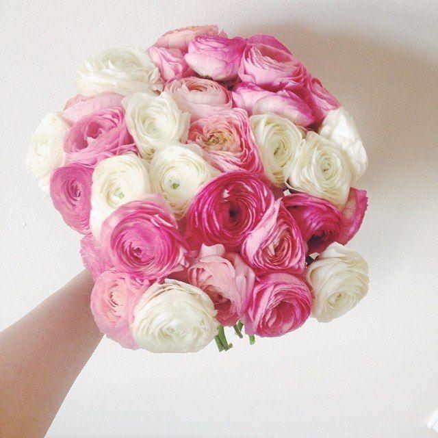 Ranunculuses // Pанункулусы   #bouquet #ranunculuses #springflowers #lovepink #flowerlove #coolflowers_cz #pragueflowersdelivery #kvetiny #kvetinypraha #dovozkvetin #vazanikytic