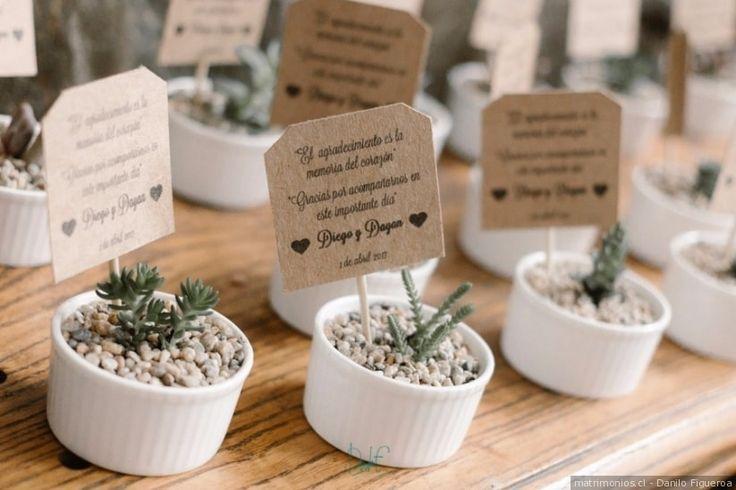 Los cactus son un detalle diferente y de buen gusto. Además de ser un recuerdo que seguro todos conservarán, éstos darán un toque sencillo y natural a tu matrimonio.