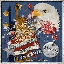 cool 4th july pictures