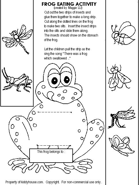 Frog Life Cycle For Kids Worksheet Pin by Mecca Ca...