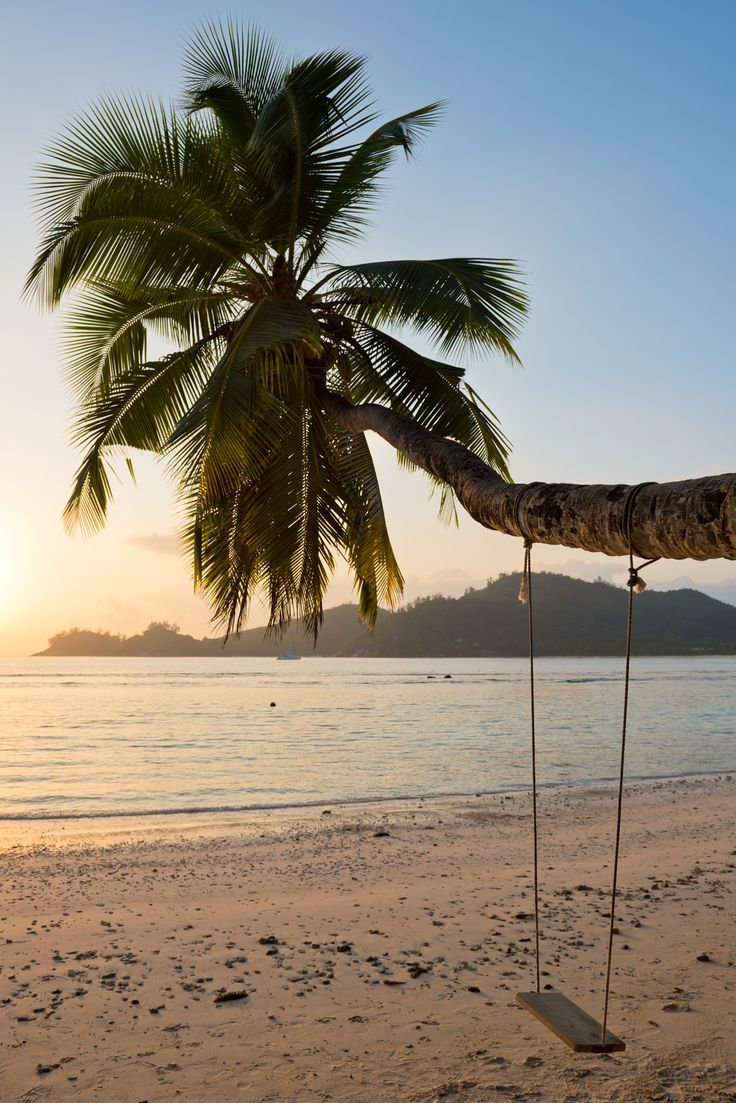 Tropical beach at Mahe island Seychelles - Tropical beach at Mahe island Seychelles. Vertical shot