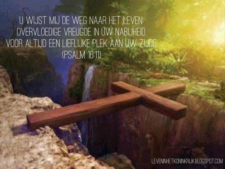 Jezus is de Weg! - Psalm 16:11 #bemoediging #hoop