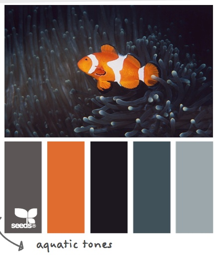 Aquatic Tones #designseeds
